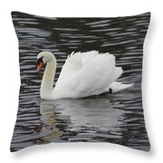 Handsome He Glides Throw Pillow