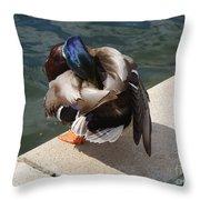 Handsome Mallard Throw Pillow