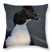 Handsome Muscovy Throw Pillow
