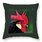 Handsome Rooster Throw Pillow