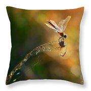 Hang On Throw Pillow