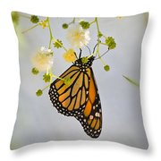 Hang On  Throw Pillow