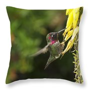 Hangin For A Meal Throw Pillow