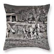 Hangin' With My Homies Throw Pillow