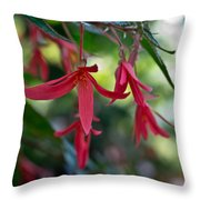 Hanging Asian Lillies Throw Pillow