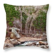 Hanging Bridge Throw Pillow
