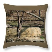 Hanging Chimp 365 Throw Pillow