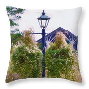Hanging Flowers With An Old Fashioned Lantern Throw Pillow