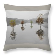 Hanging Garden Throw Pillow by Debra and Dave Vanderlaan
