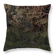 Hanging Garden In Moonlight Throw Pillow