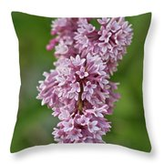 Hanging Lilac Throw Pillow