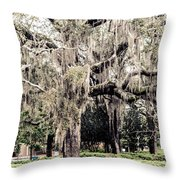 Hanging Moss Throw Pillow