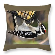 Hanging On For Food Throw Pillow