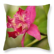 Hanging Orchid Throw Pillow