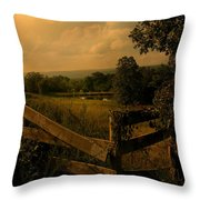 Hanging Out At The Corner Throw Pillow