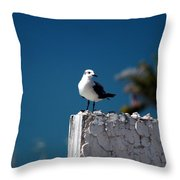 Hanging Out In Key West 2 Throw Pillow