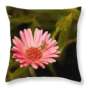 Hanging Out With A Flower Throw Pillow