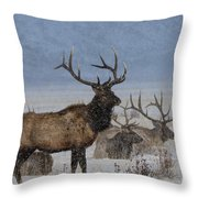 Hanging Out With The Boys Throw Pillow