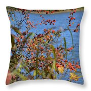 Hanging Over The Lake  Throw Pillow