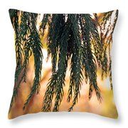 Hanging Pine Throw Pillow
