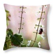 Hanging Pot With Bee Throw Pillow