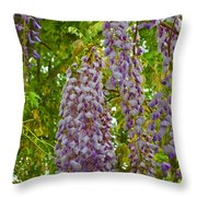 Hanging Wisteria Blossoms Throw Pillow