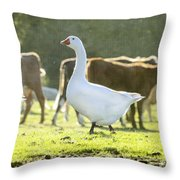 Hanging With The Herd Throw Pillow