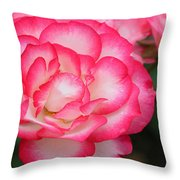 Hannah Gordon Floribunda Rose Throw Pillow