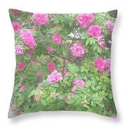 Hansa Roses Throw Pillow