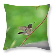 Happy As A Hummer Throw Pillow