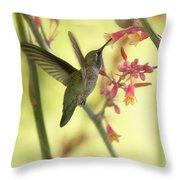 Happy As A Hummingbird  Throw Pillow