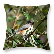 Happy As A Titmouse Throw Pillow