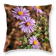 Happy Asters Throw Pillow