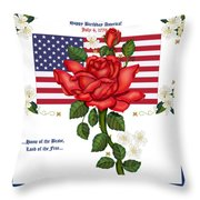 Happy Birthday America Throw Pillow by Anne Norskog