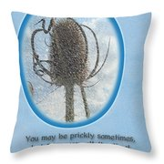 Happy Birthday Greetings - Dried Teasel Thistle Flower Head Throw Pillow