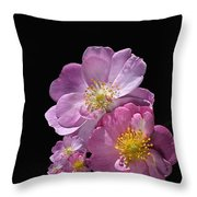 Happy Birthday Pink Roses Throw Pillow