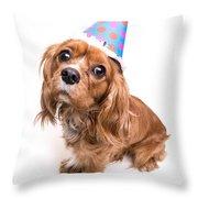 Happy Birthday Puppy Throw Pillow by Edward Fielding