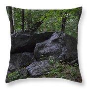 Happy Boulder Throw Pillow