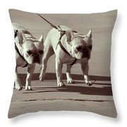 Happy Dogs 14 Throw Pillow