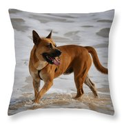 Happy Dogs 5 Throw Pillow