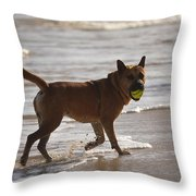 Happy Dogs 7 Throw Pillow