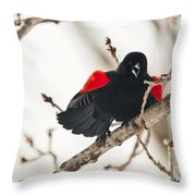 Happy For Spring Throw Pillow