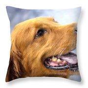 Happy Golden Throw Pillow