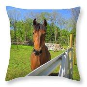 Happy Horse Throw Pillow