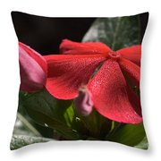 Happy In The Light Throw Pillow