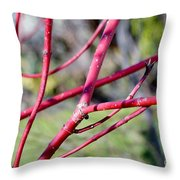 Happy In The Sun Throw Pillow