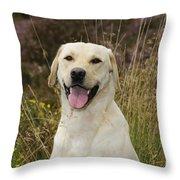Happy Labrador Throw Pillow