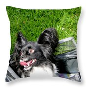 Happy Papillon In A Bag Throw Pillow by Al Bourassa