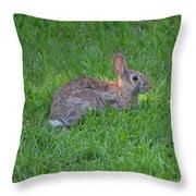 Happy Rabbit Throw Pillow