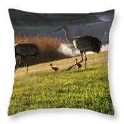 Happy Sandhill Crane Family - Original Throw Pillow